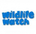Wildlife Watch - Den Building at The Parkridge Centre (6yrs+)