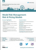 Model Risk Management: Risk and Pricing Models