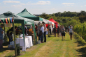 Warden Abbey Vineyard Open Day and Wine Sale