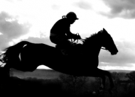 Exhilarating Point to Point Racing at Vauterhill