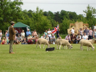 Cambridgeshire County Show