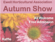 Ewell Horticultural Assoc. – AUTUMN SHOW #Loveyourgarden