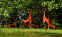 Hillier Gardens: Art in the Garden
