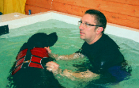 canine hydrotherapy in suffolk