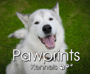 10% DISCOUNT ON 2 DOGS BOARDING AT PAWPRINTS KENNELS