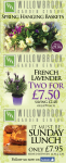 Great Offers at Willowbrook Garden Centre