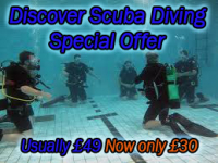Save over 30% on Scuba Diving Lessons