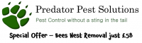 Special Offer: Bees Nest Removal just £58 with Predator Pest Solutions