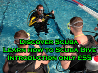 Stuck for a Perfect Gift  - Save over 20% on Scuba Diving Lessons only £45