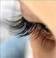 DOLLY LASH LIFT FOR JUST £25