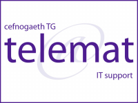 Free IT diagnostic from Telemat