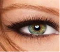 Half Price LASH PERFECT LASH EXTENSIONS