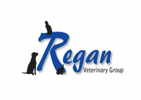 Don't miss out on the benefits of joining Regans Vets Healthy Pet Club
