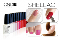 Shellac Wednesday