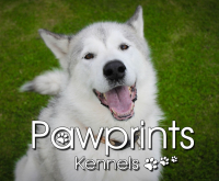 3 DOGS BOARD FOR £35 AT PAWPRINTS KENNELS