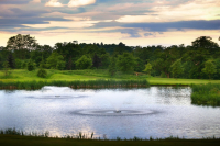 Spring Golf - from only £29*