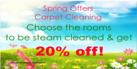 Spring Steam Cleaning 20% Offer