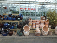 Pot Sale 50% Off a huge range