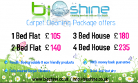 Spring Clean your carpets - an amazing whole flat/house offer