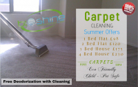 Carpet Cleaning Summer Offers from Bioshine