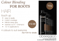 Colour Blending for Roots just £12.99