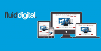 FREE WEBSITE CONSULTATION WITH FLUID DIGITAL