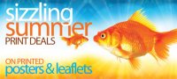 Sizzling Summer Deal on Posters and Leaflets