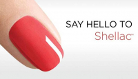 August Shellac Offer