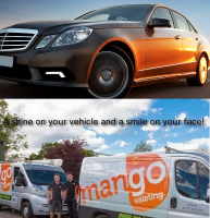 Paint Protection deal - just £199 from Mango Valeting