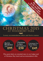 3 nights for the price of 2 over Christmas!