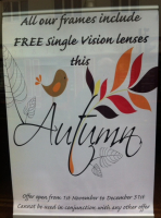 FREE Standard Single Vision Lenses on New Frames