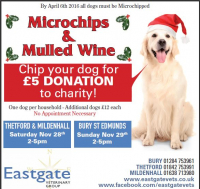 Microchipping November Offer