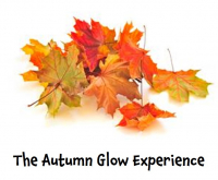 The Autumn Glow Experience at David Patrick. #Epsom