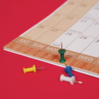 25% OFF WALLPLANNERS