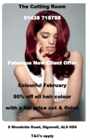 50% off hair colour for new clients at The Cutting Room, Digswell