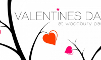 The Valentine Stay at Woodbury Park