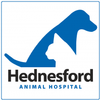 Senior pet health check just £69
