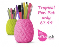 Tropical Pen Pot only £7.99
