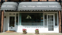 Flea and Worming Offer at The Village Veterinary Surgery in Hatfield Garden Village