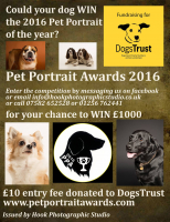 Pet Portrait Awards