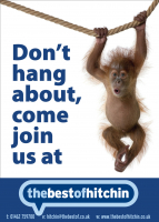 DON'T HANG AROUND! Get 3 Months FREE Promotion