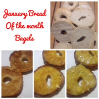 Bread of the Month - Bagels