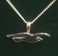 brighton, and, hove, albion, seagulls, jewellery, silver, cufflinks, pendants, necklaces, football, 2