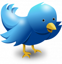 social media training in bury st edmunds