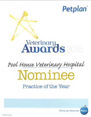 Veterinary Practice of the Year