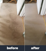 Cheap Carpet Cleaning - What do you get by price shopping?