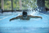 Laned swimming