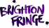 Brighton Fringe  - Business Opportunities in 2017