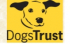 Dogs Trust Fun day at Ragley