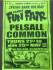 Family Fun Fair @ Pelsall Common